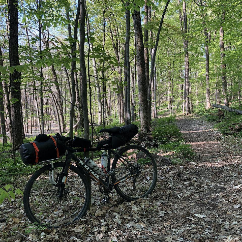 Un vélo dans la forêt