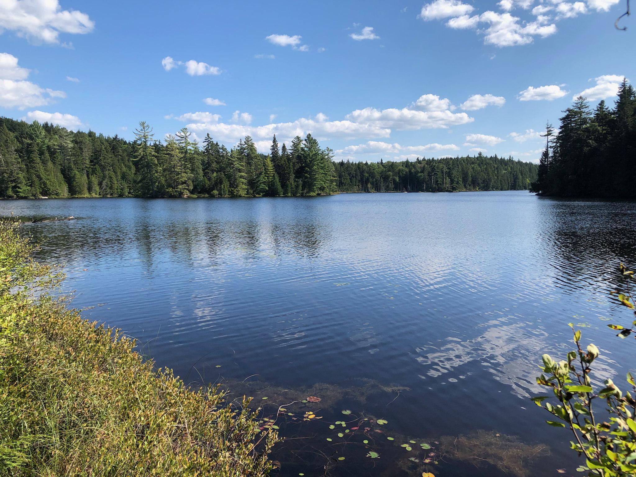 Vue sur le Lac à l'Ours.