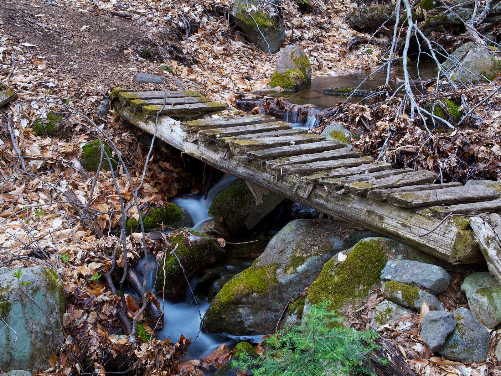 Pont abîmé sur un ruisseau