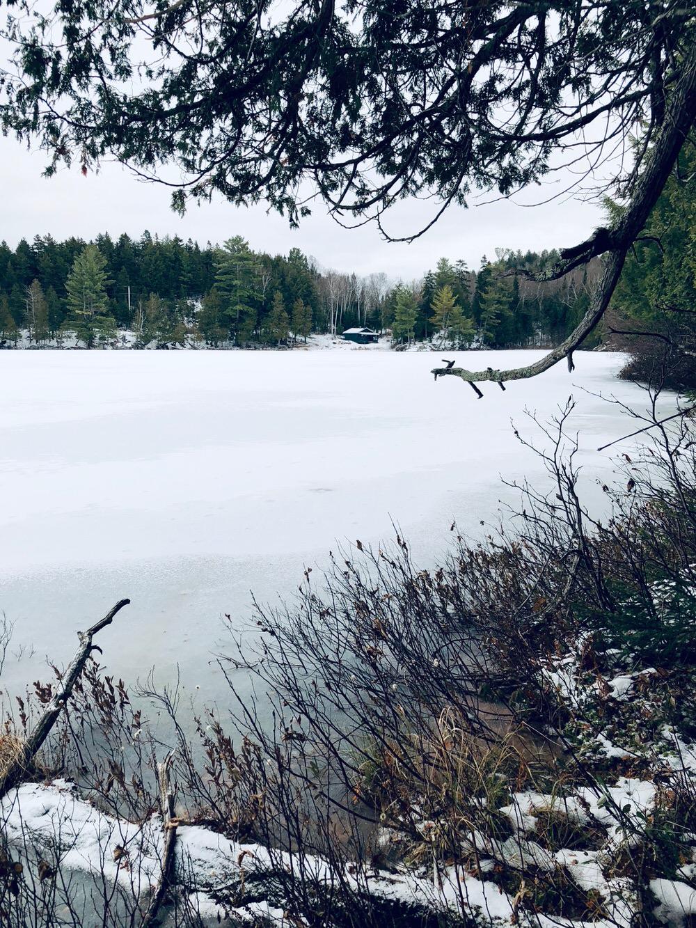 Petit Lac Caribou, maison